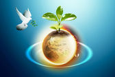 Earth And Pigeon — Stock Photo