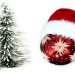 Christmas ball and tree — Stock Photo