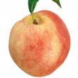 Peach — Stock Photo