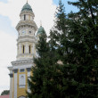 Church in Uzhhorod city - Zdjęcie stockowe