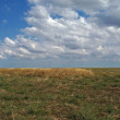 Steppe — Stock Photo #2125663