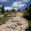 Stock Photo: Rocky path in mountains