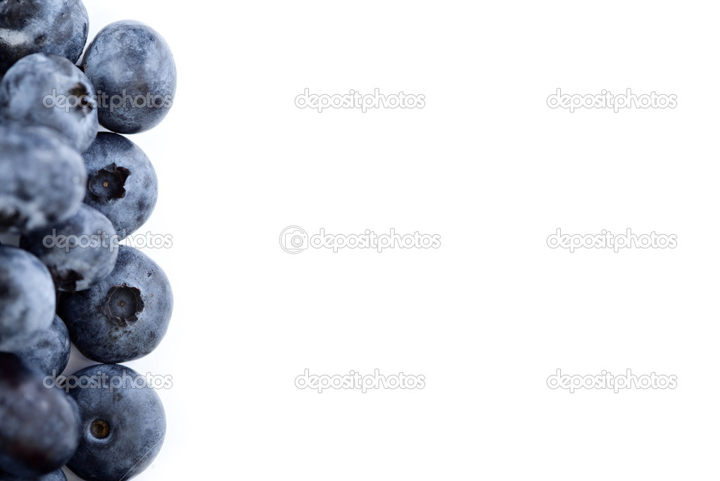 Blueberry border with empty space for text — Stock Photo #1999581