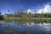 Angkor Wat Temple — Stock Photo