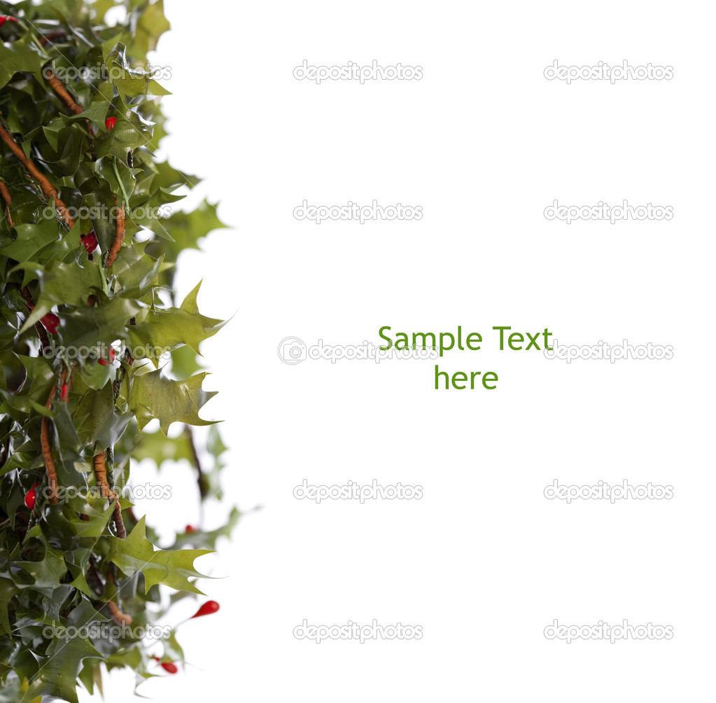 Download - Green holly border — Stock Image #2522858
