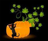 Pumpkin and black cat — Stock Vector