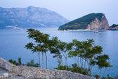 The coast of the Adriatic sea — Stock Photo