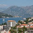 Montenegro nature — Stock Photo #2239651