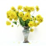 buquê de flores em vaso — Foto Stock