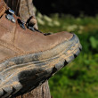 Stock Photo: Mountain Boot