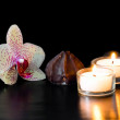 Chocolate, orchid and candles — Stock Photo