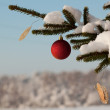 Fir tree branch with decoration — Stock Photo