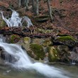 Forest waterfall 2009-12-1 — Stock Photo