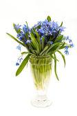 Vase mit Blumen — Stockfoto