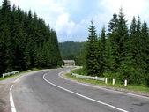 Serpentine road — Stock Photo