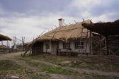 Wooden village. Rural house — Stock Photo