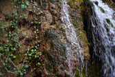 Overgrown waterfall rock — Stock Photo