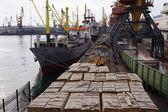 Grues portuaires 2 — Photo
