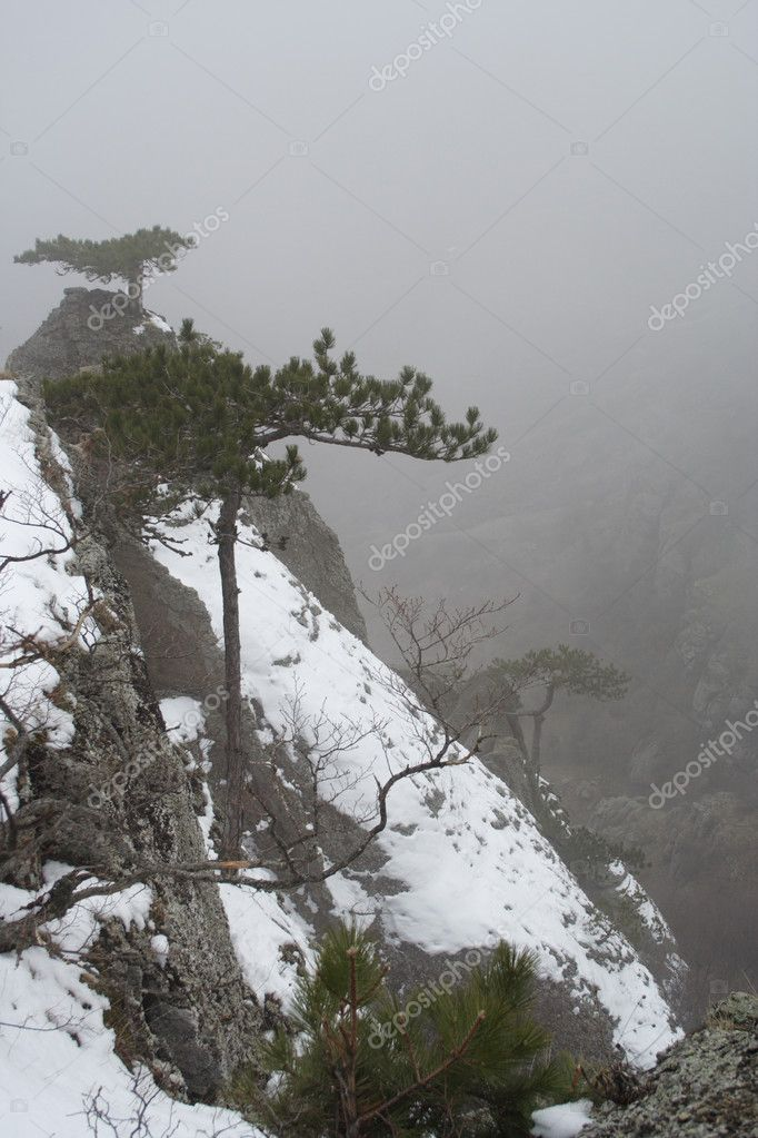 View of a misty rocks of Ghost Valley, Demerdji, Crymea, Ukraine — Stock Photo #1671555