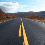 Road — Stock Photo #1754643