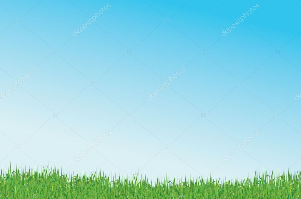 Green grass and blue sky vector background — Stock Vector #2348447