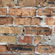 Brick wall background — Stock Photo #2574205