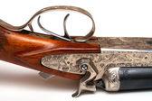 Vieux fusil — Photo