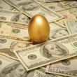 Gold nest egg on a layer of cash - 图库照片