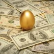 Gold nest egg on a layer of cash - Stockfoto