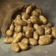Stock Photo: Spilled burlap sack of potatoes