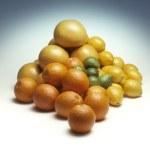 Pile of mixed citrus fruit — Stock Photo