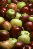 Pile of mixed varieties of apples — Stock Photo