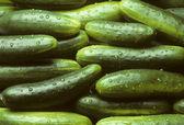 Een stapel van verse komkommers — Stockfoto
