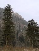 Mountain ridge Sihote-Alin — Stock Photo