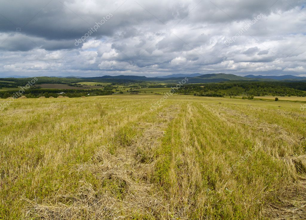 Landscape with heaps of straw and the cloudy sky — Stock Photo #1801651