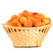 Wicker basket filled with apricots — Stock Photo