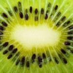 Kiwi slice closeup — Stock Photo #1686984