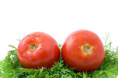 Pair of ripe tomatoes over some dill — Stock Photo