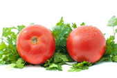 Two ripe tomatoes and parsley — Stock Photo