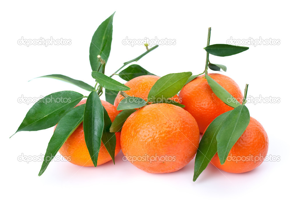 Some fresh mandarines with leaves isolated on the white background — Stock Photo #1688704