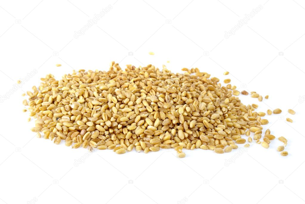 Some barley grains isolated on the white background  Stock Photo #1689469