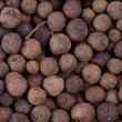 Spices: background of allspice — Stock Photo