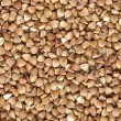 Background of dried buckwheat grains — Stock Photo