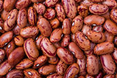 Spotty red haricot beans — Stock Photo