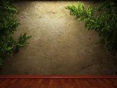 Ivy e velho muro de concreto — Fotografia Stock