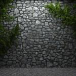 Illuminated stone wall and ivy — Stock Photo