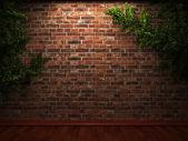 Illuminated brick wall and ivy — Stock Photo