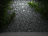 Illuminated stone wall and ivy — Stock Photo