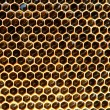 honeycomb background — Stock Photo #1803091