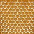honeycomb background — Stock Photo
